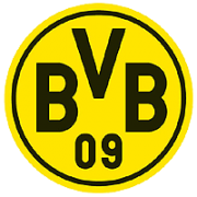 DO-BVB-logo-1